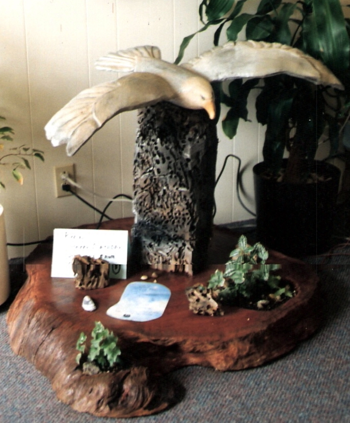 Chainsaw Carving of Seagull on burl display